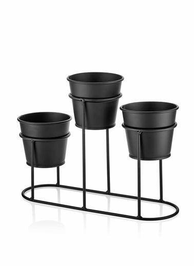 The Mia Saksı3 Lü Set - Siyah Siyah